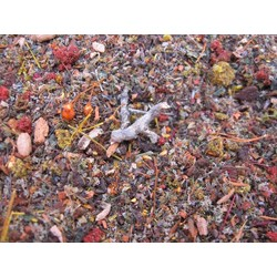 Fine Autumn Forest Scatter - Autumn 50ml. - Reality in Scale - RIS SCAT03