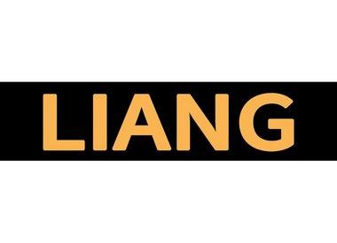 Liang Models
