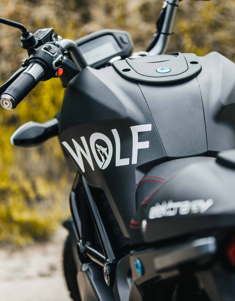 Elektra Wolf