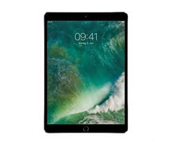 iPad (2017) coques