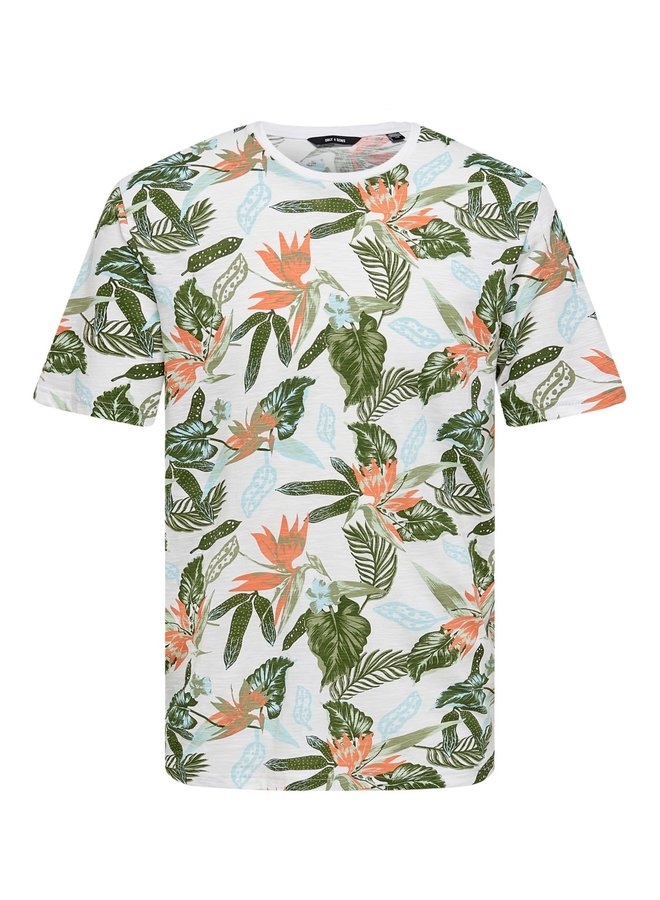 Only & Sons T-shirt  22020078 - Wit