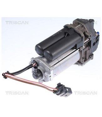 Triscan air compressor suspension