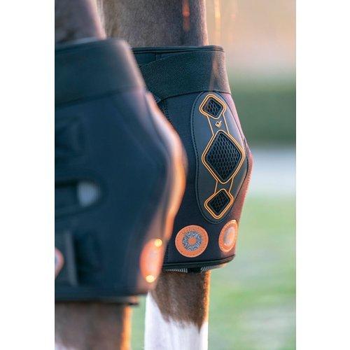 LeMieux Conductive Magnotherapy Hock Boots