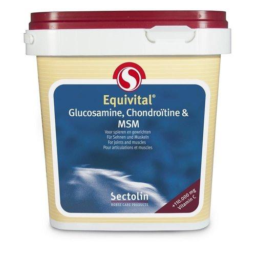 Sectolin Equivital Glucosamine, Chondroïtine & MSM 1 kg