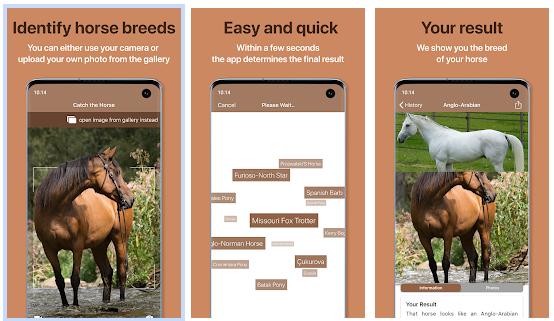 Afbeelding Horse scanner app