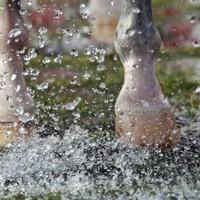 5 manieren om de benen van je paard te koelen