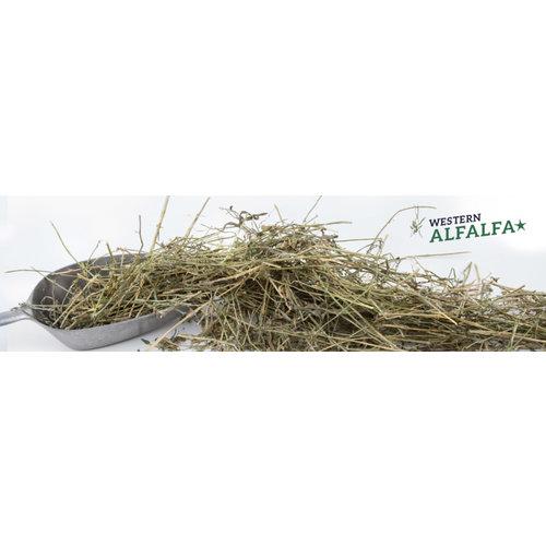 Höveler Original Western Alfalfa 4 x 25 kg