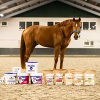 Nieuw in het assortiment van Horse & Protect : Höveler