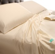 Allergiker Bettdecke