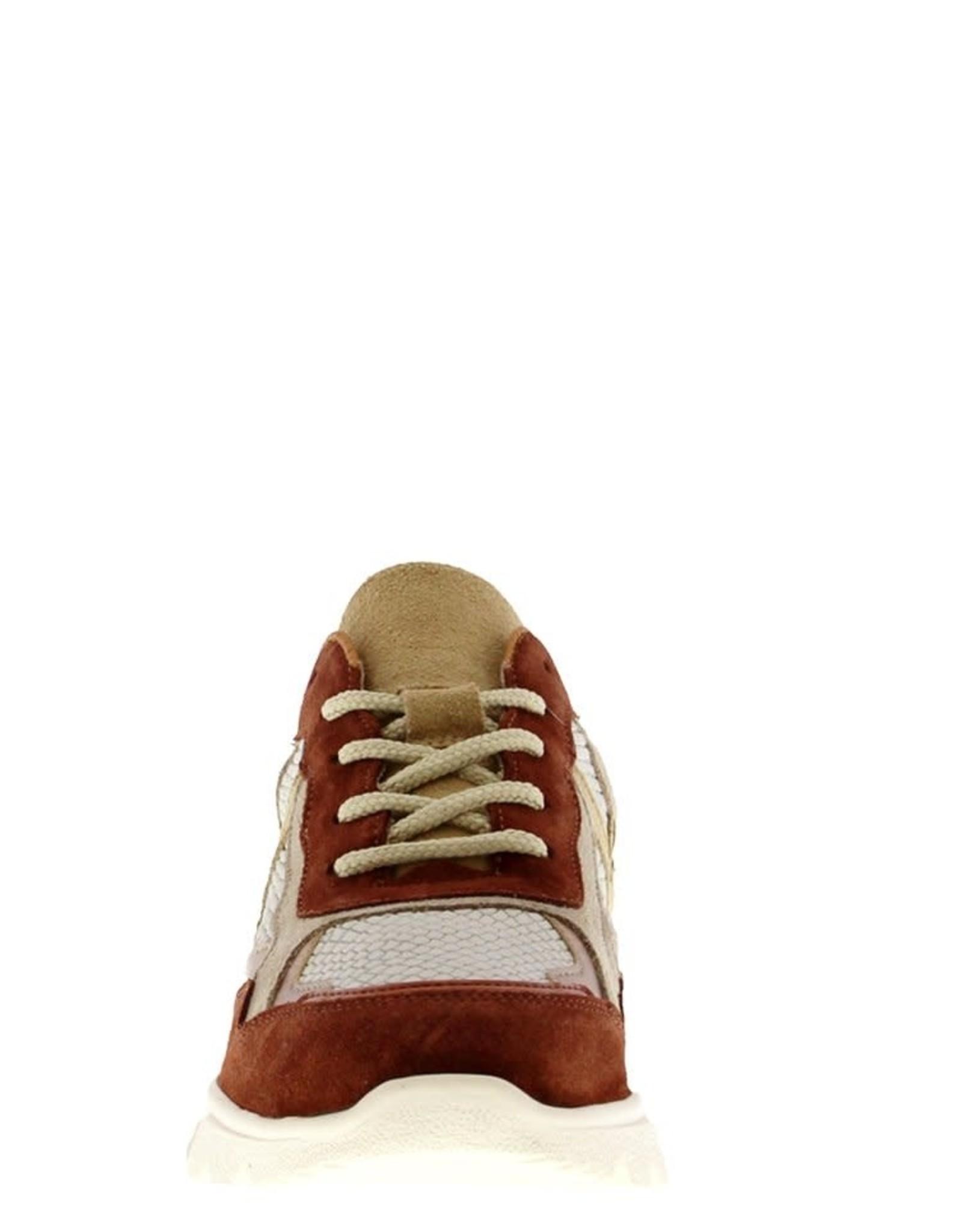 Kady sneakers