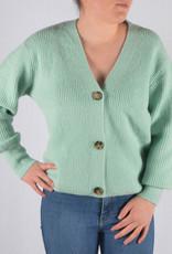 Pastel gilet  light green one size