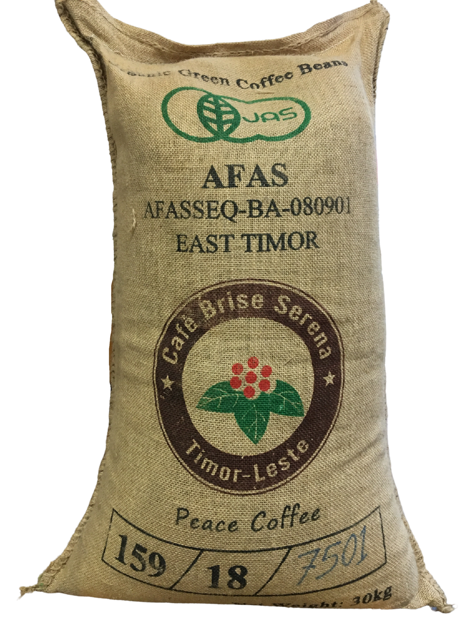 ARTcoffee East-Timor Goulala Village koffie 73