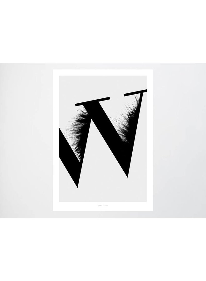 """Poster """"ABC Flying Letters - W"""" von typealive"""
