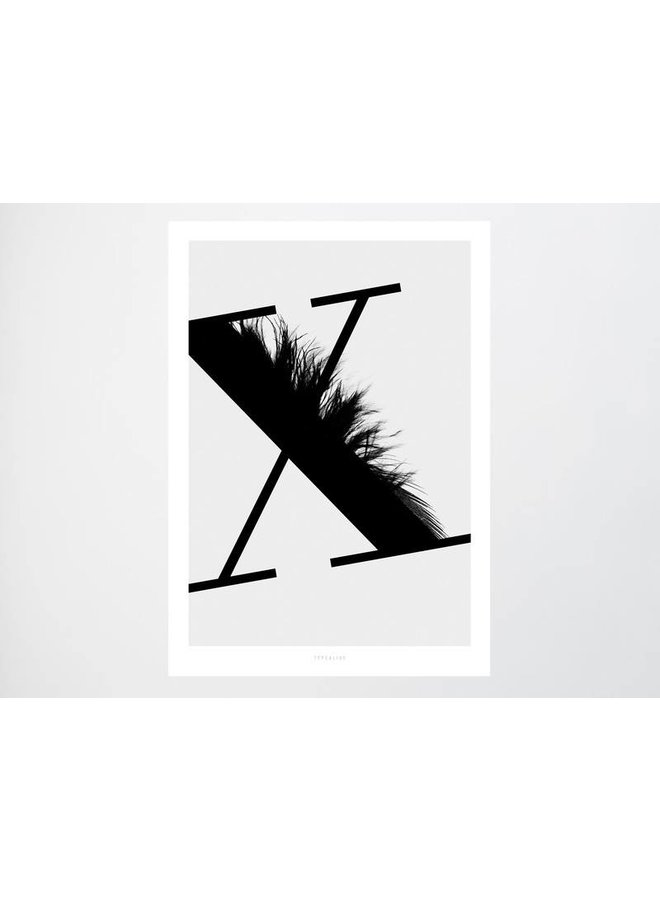 """Poster """"ABC Flying Letters - X"""" von typealive"""