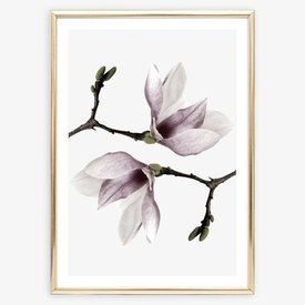 "Poster ""Magnolia Twins"" von Tales by Jen"
