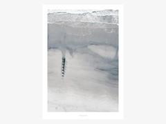 Artikel mit Schlagwort Poster skandinavischer Stil