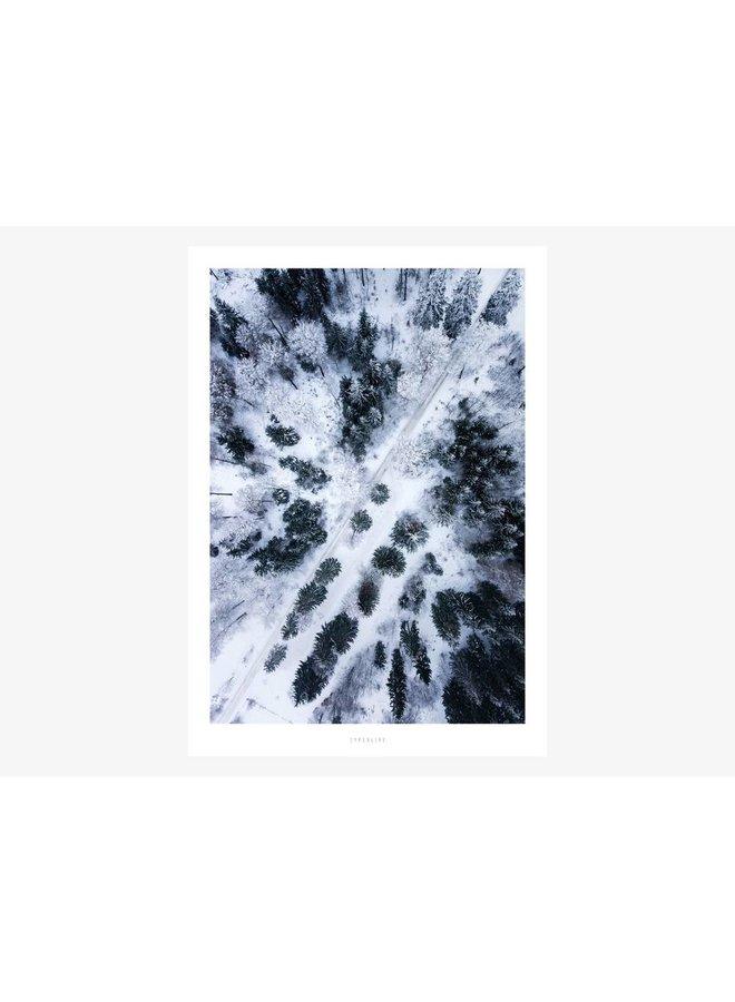 "Poster ""Above The Woods No. 1"" von typealive"