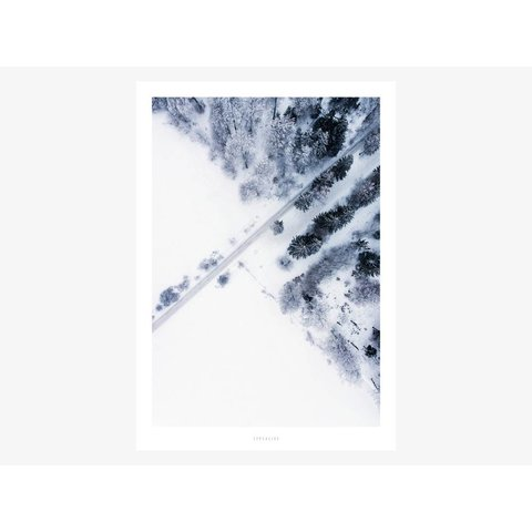 "Poster ""Above The Woods No. 2"" von typealive"