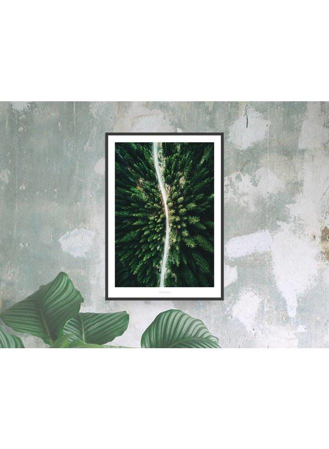 "Poster ""Above The Woods No. 3"" von typealive"