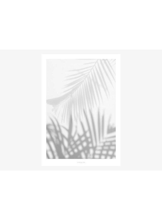 "Poster ""All About Palms No. 1"" von typealive"
