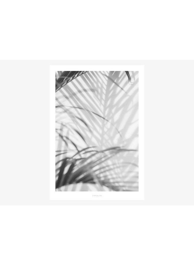 "Poster ""All About Palms No. 2"" von typealive"