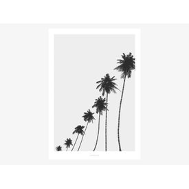 "typealive Poster ""All About Palms No. 6"" von typealive"