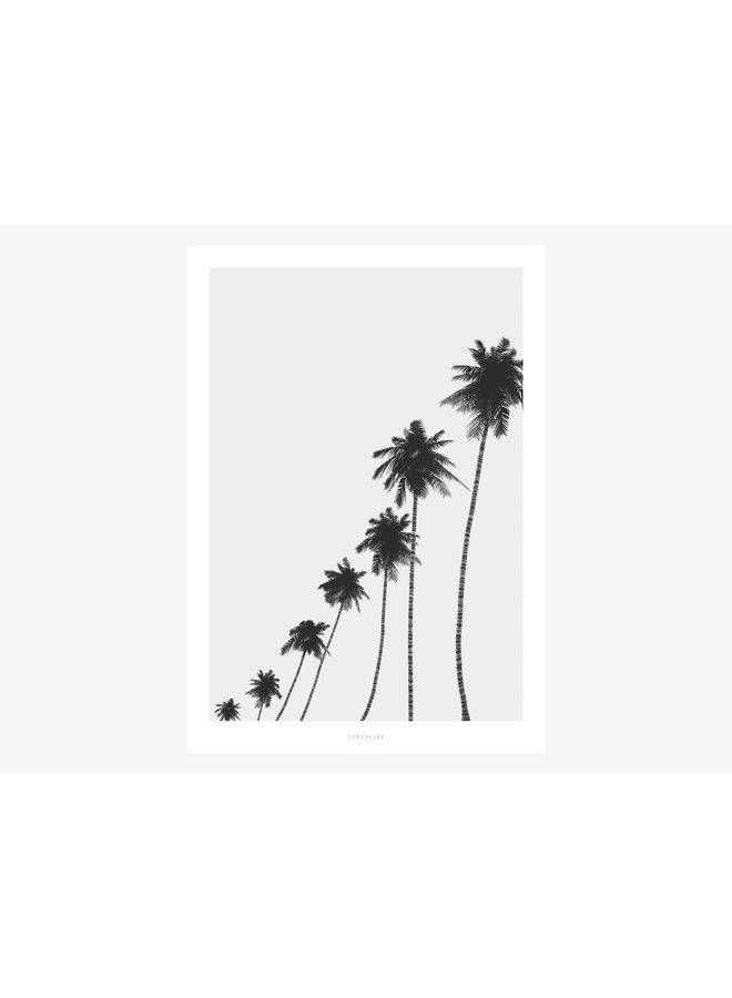 "Poster ""All About Palms No. 6"" von typealive"
