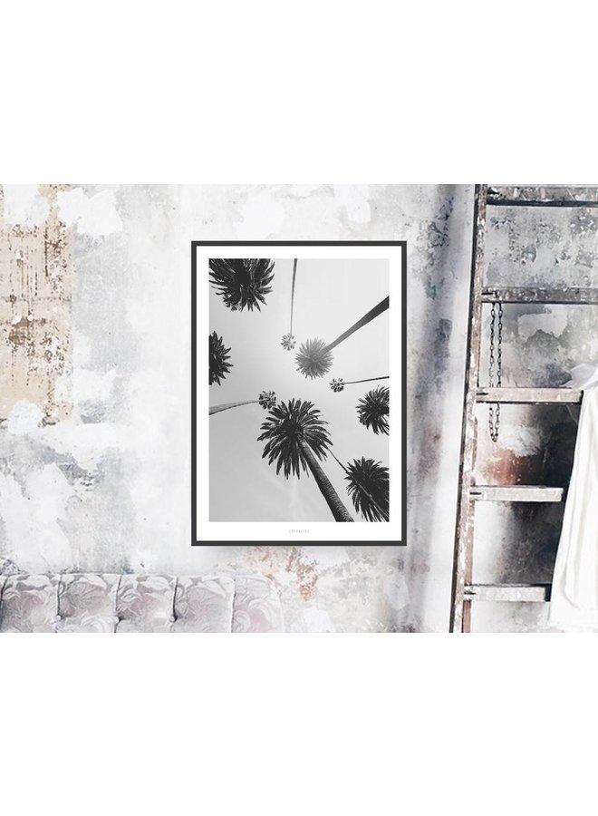"Poster ""All About Palms No. 7"" von typealive"