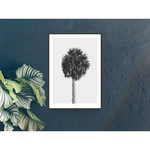 "Poster ""All About Palms No. 8"" von typealive"