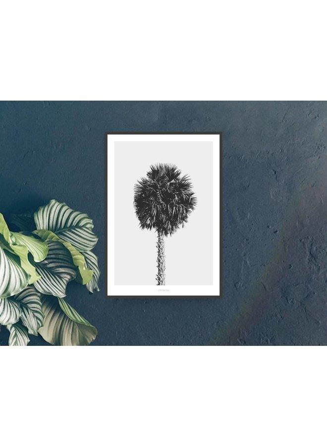 "Poster ""All About Palms No. 8"" von typealive"