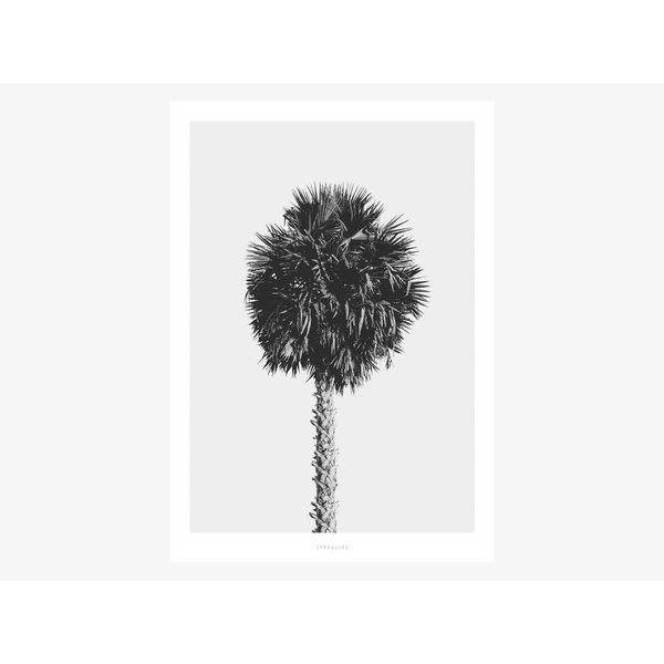 """typealive Poster """"All About Palms No. 8"""" von typealive"""
