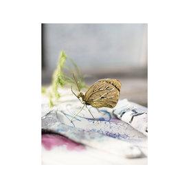 "A Simple Mess Figur ""Schmetterling""  von A Simple Mess"