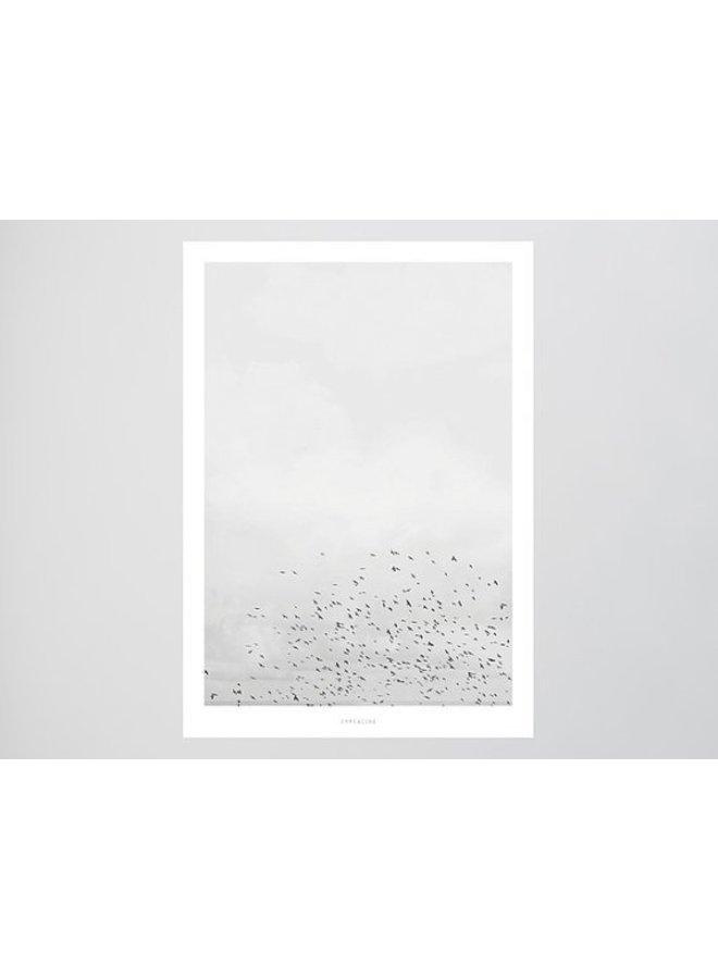 """Poster """"Landscape No. 41"""" von typealive"""
