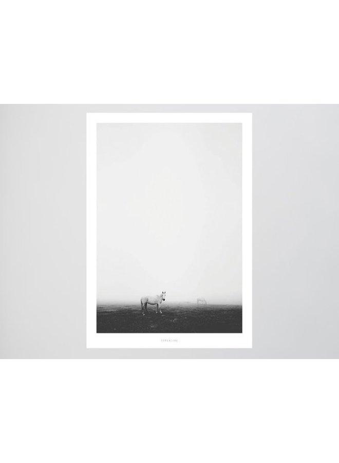 """Poster """"Landscape No. 6"""" von typealive"""