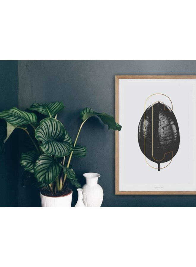 "Poster ""ABC Plants - C"" von typealive"