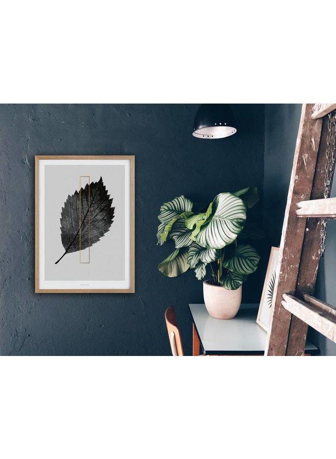 """Poster """"ABC Plants - I"""" von typealive"""