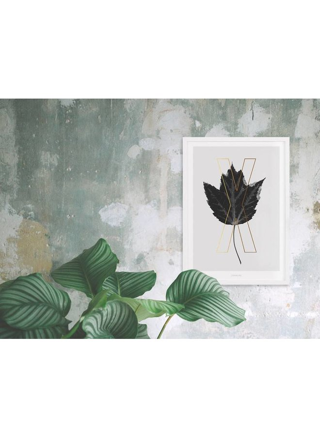 "Poster ""ABC Plants - X"" von typealive"
