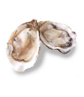 Franse oesters (Fines de Normandie)