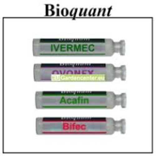 BioQuant BioQuant Biological control set(Spiders on young crops)