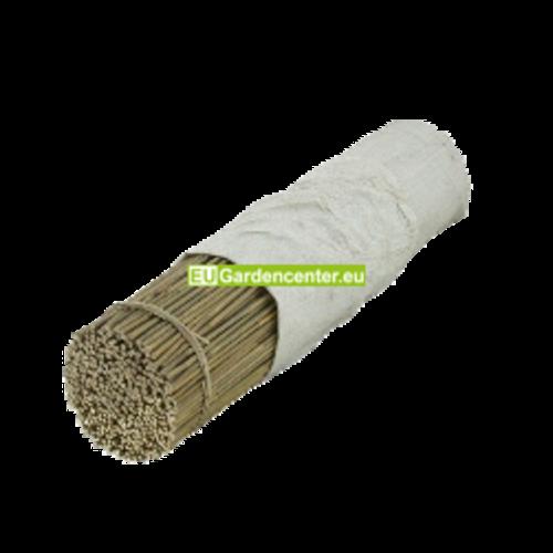Bamboo 120cm