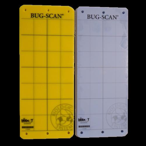 Biobest Bug-Scan Insecten Plakkaart - 10stks