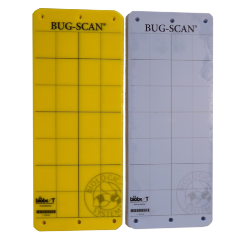 Biobest Bug-Scan Insects Sticky Trap - 10pcs