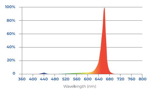 toplighting-fixture-r/w-lb-spectrum