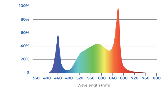 Toplighting-fixture-indoor-white-spectrum