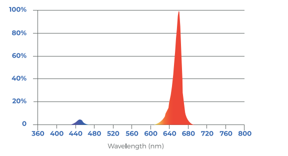 Toplighting-fixture-R/B-LB Spectrum