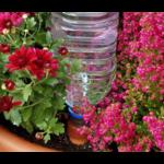 Blumat Blumat Flessen adapter - Bewateringssysteem