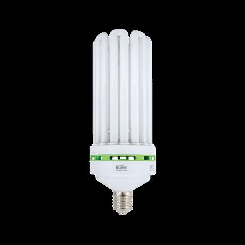LUMii LUMii EnviroGro CFL Lamp ~ Warm | Cool | Super Cool