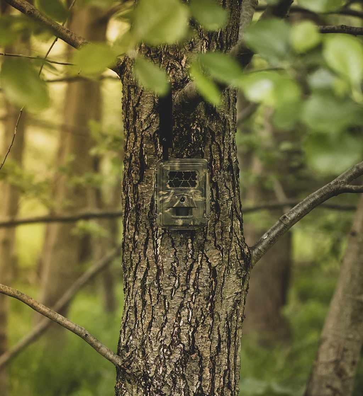 Seissiger Special-Cam LTE - SUPERSIM-Edition-6