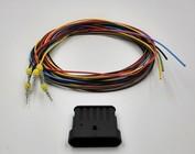 Tab (vrouw) + 2m. kabel 1 t/m 6-Posities