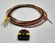 Plug (man)  + 2m. kabel 1t/m 6 Posities